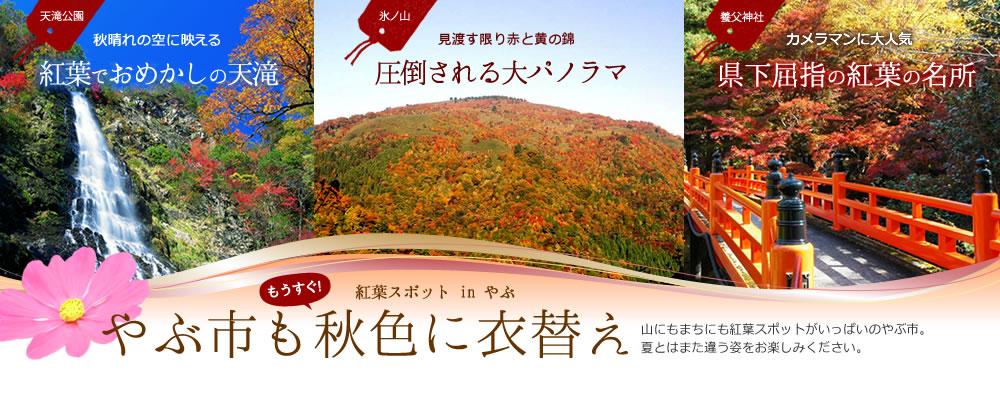 autumn_spot