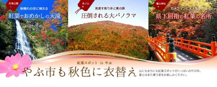 autumn-spot2