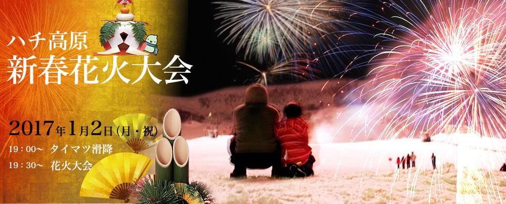 ハチ高原新春花火大会